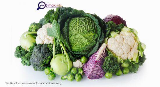 Picture Yuk Simak Info Makanan Tinggi Sulfur
